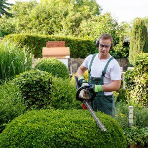 Pourquoi contacter un paysagiste en Essonne ?